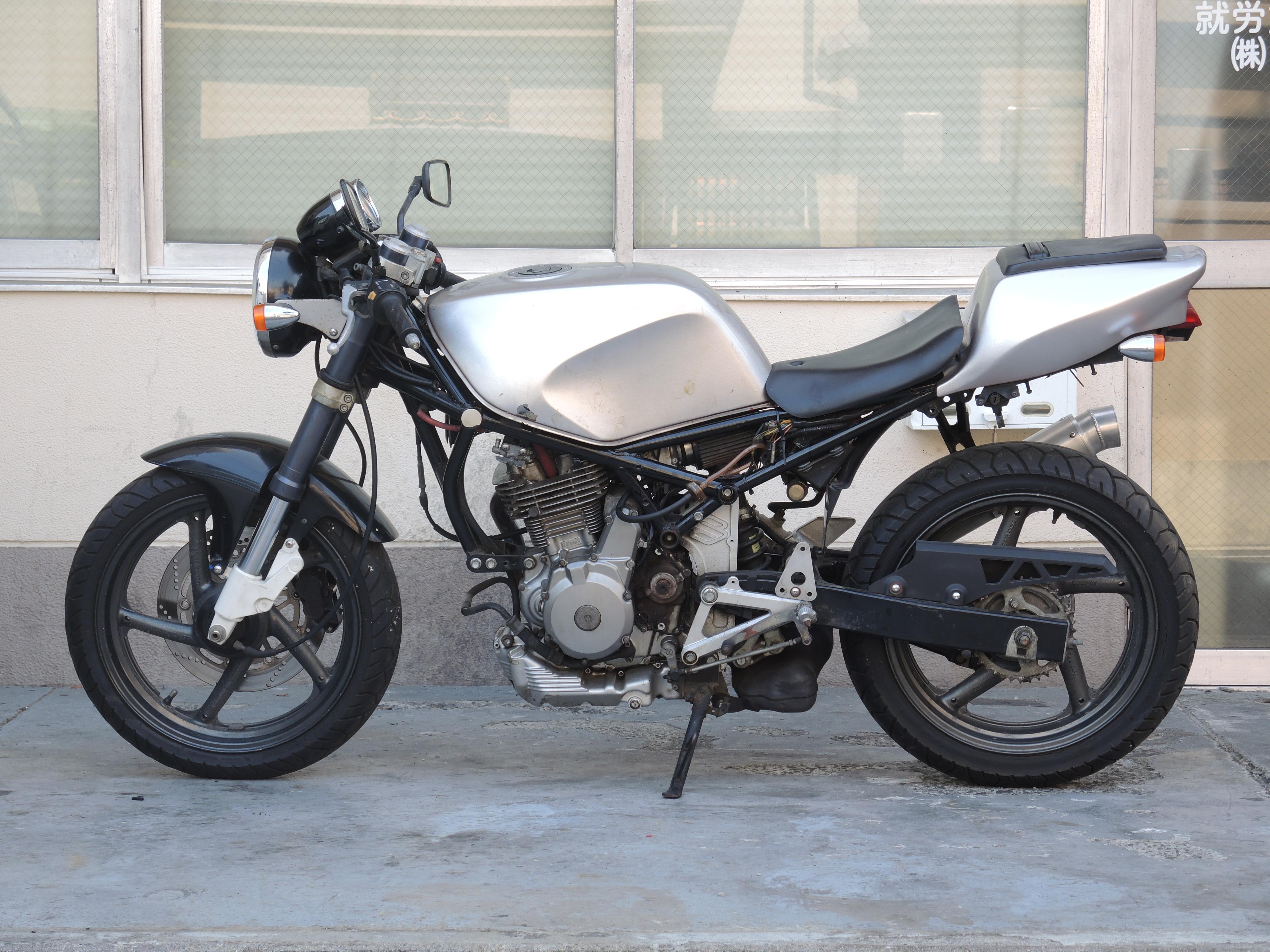 GOOSE250